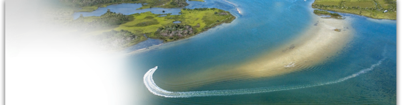 Fishing Charters on St. Simons Island, Jekyll Island, Cumberland Island.  Scenic Marshes of the Golden Isles